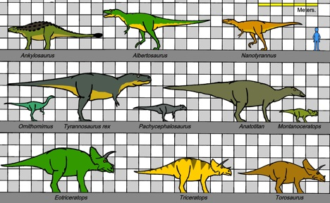 Dinosaur size comparison